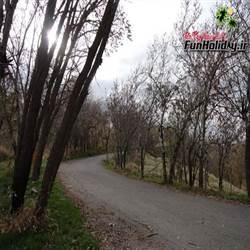 پارک جنگلی میانه