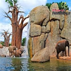استثنایی ترین باغ وحش دنیا که در آن خبری از قفس نیست