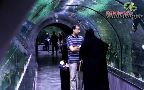 احداث و راه اندازی آکواریوم دریایی واسکله های گردشگری در بندر بوشهر