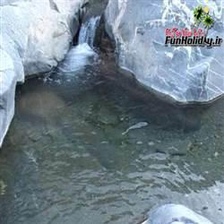چشمه آبگرم شیرآباد